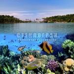underwater-10