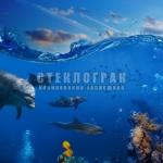 underwater-16